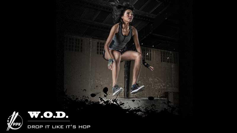 Power – Drop It Like It's Hop